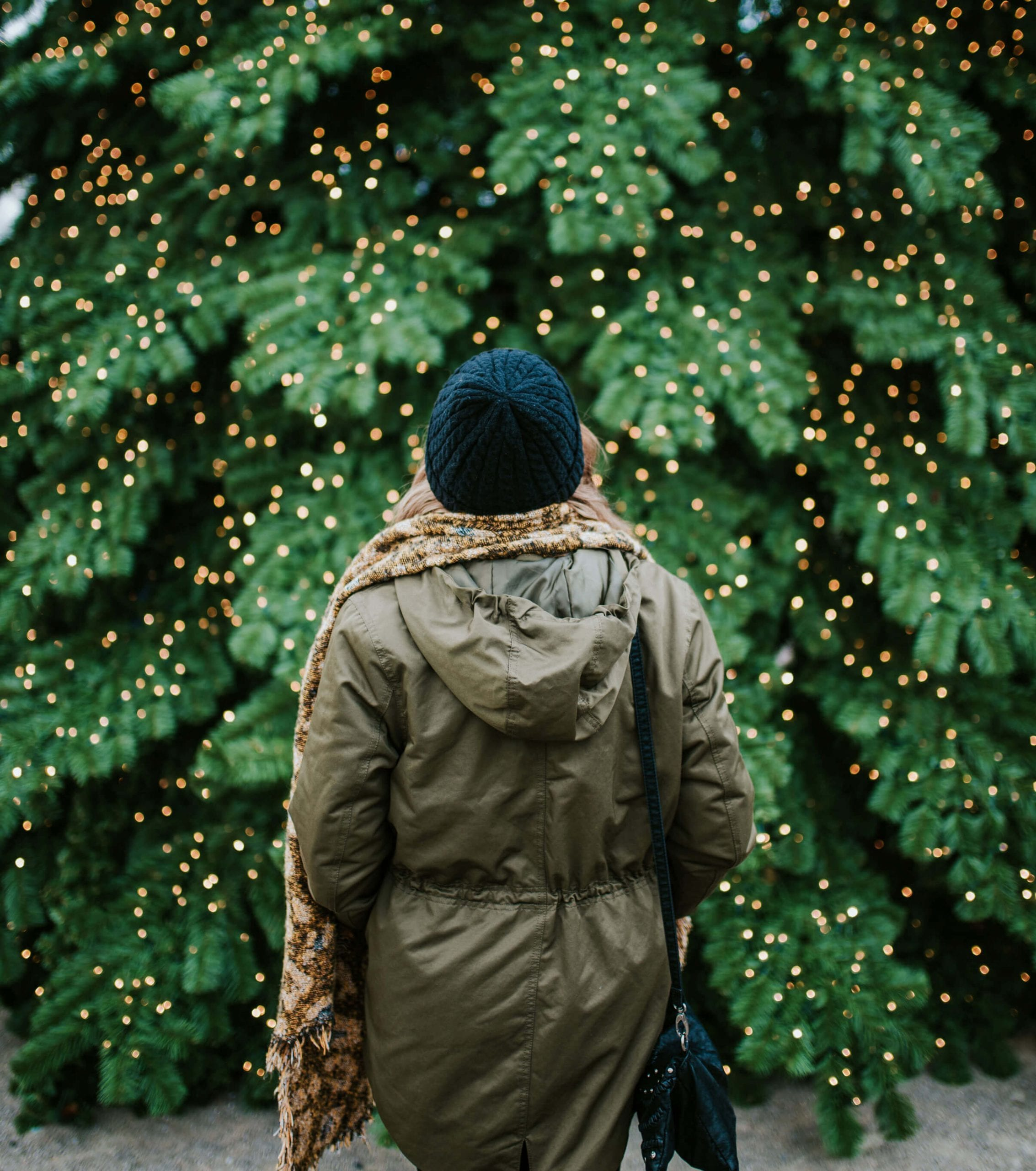 City vs Suburbs: Holiday Decorations in New York