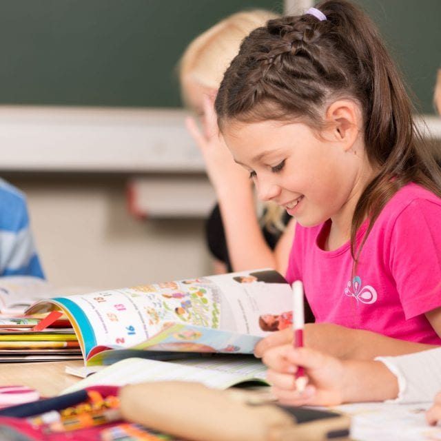 Language Immersion Programs in the Boston Suburbs